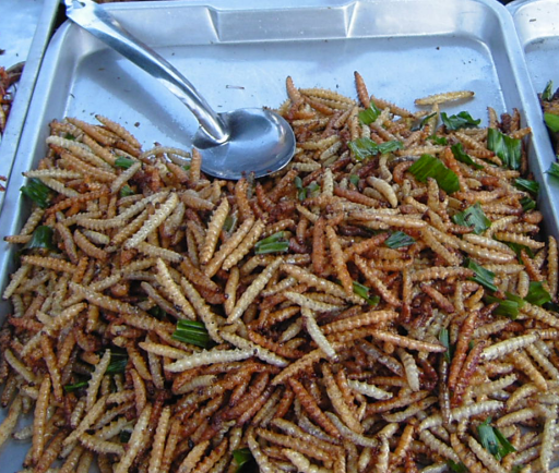 the-bamboo-worm