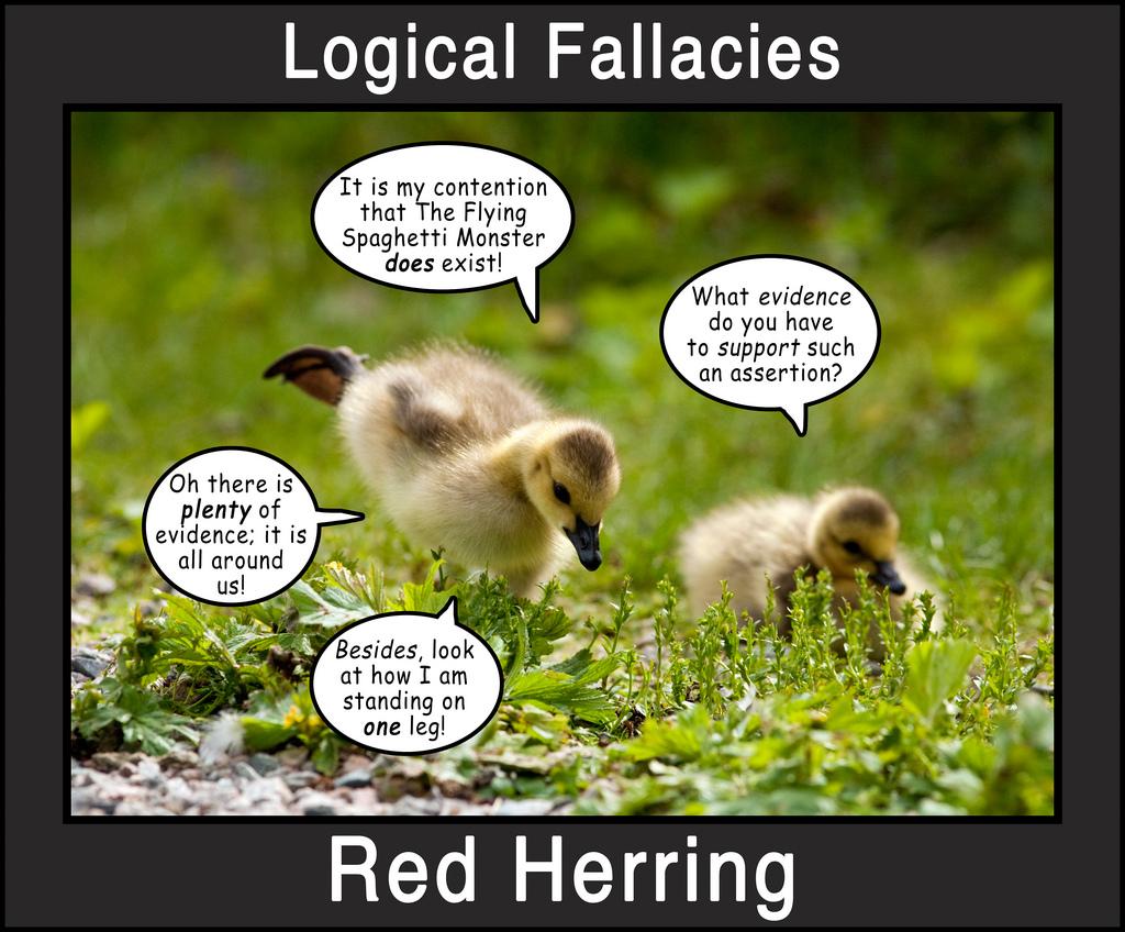 Logical Fallacies 3