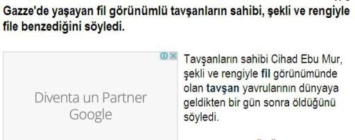 turco1