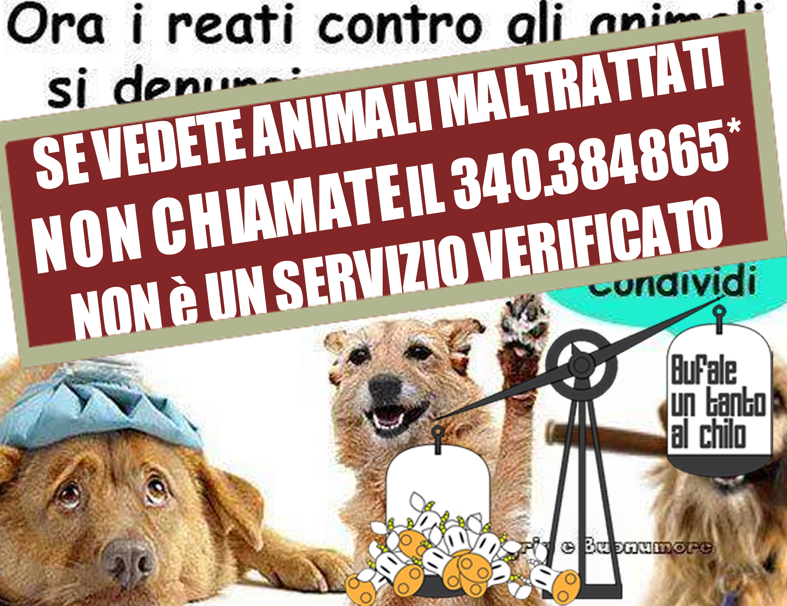 ANIMALIMALTRATTATIAIDAA