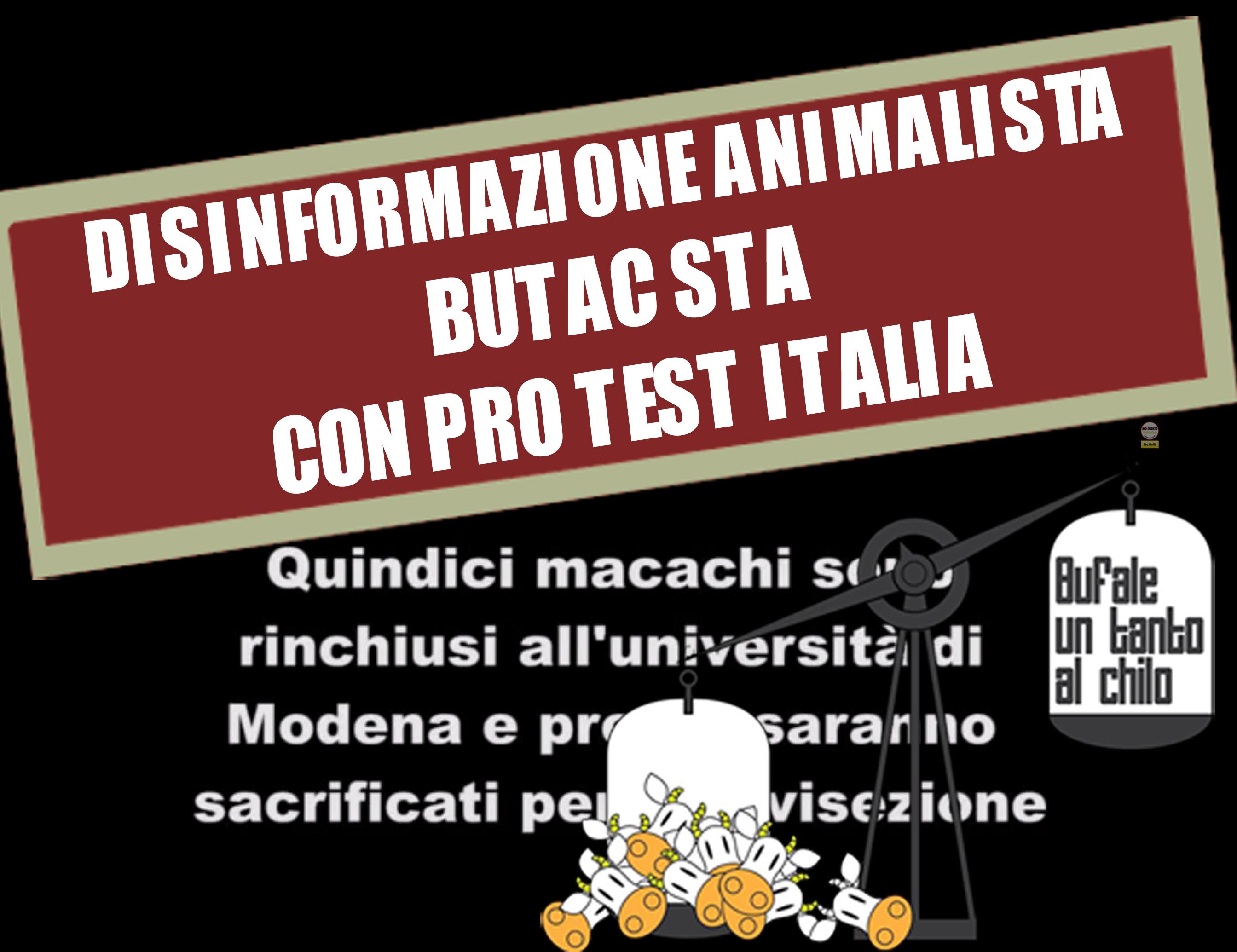 protestitalia1macachi