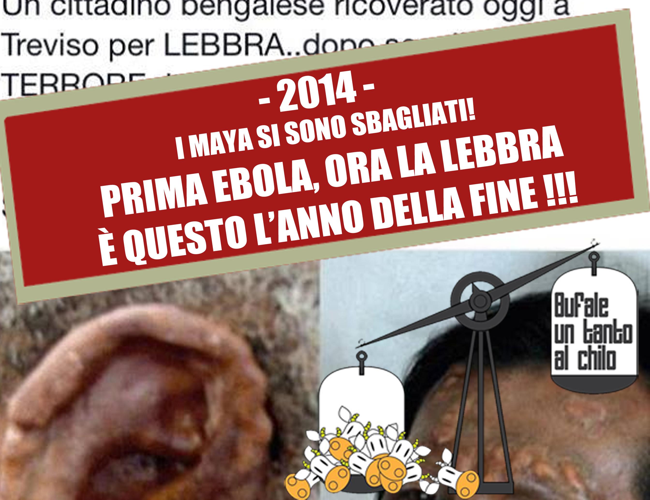 LEBBRA2014