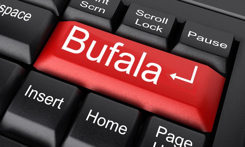 bufala