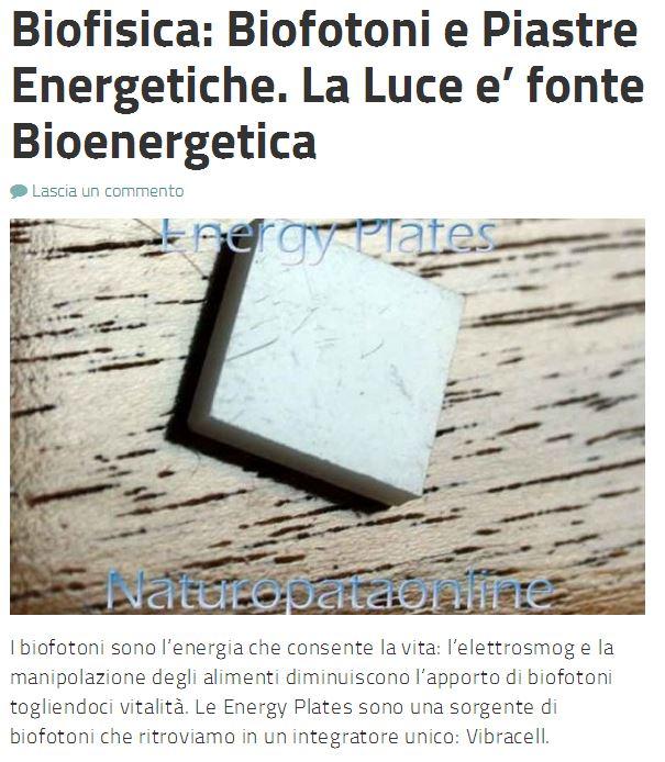 bioneregetica