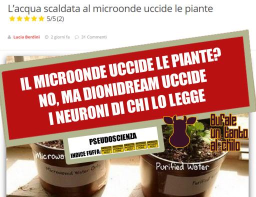 MICROONDE-PIANTINE
