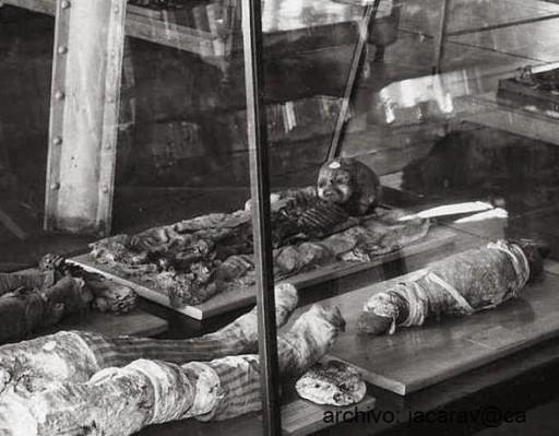 Image Credits: Isaac Koi (la mummia custodita presso il museo di Wistar - Philadelphia)