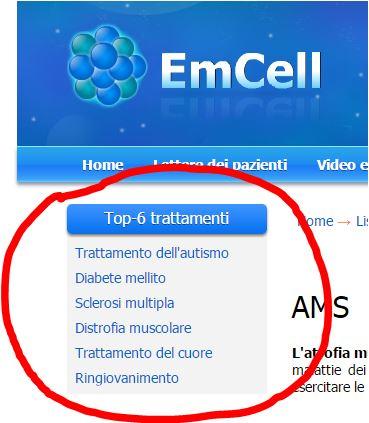 emcell1