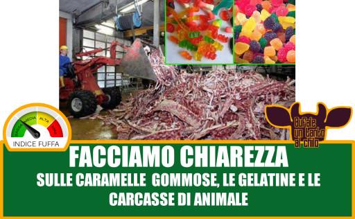 GOMMOSE -ANIMALI