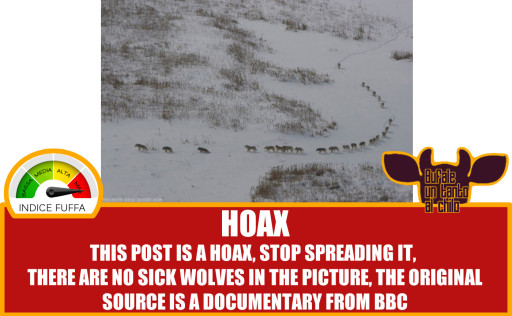 WOLFPACK-HOAX2