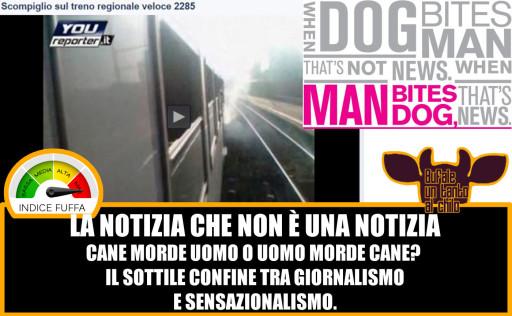 dogbitesman-youreport-treno