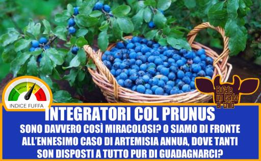 PRNUS2