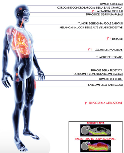corpo-umano-patologie-trattabili