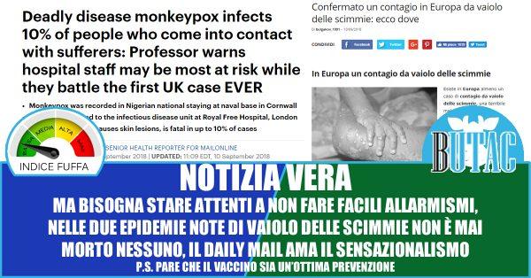 Vaiolo delle scimmie, confermato il primo caso in Europa: è allerta contagio