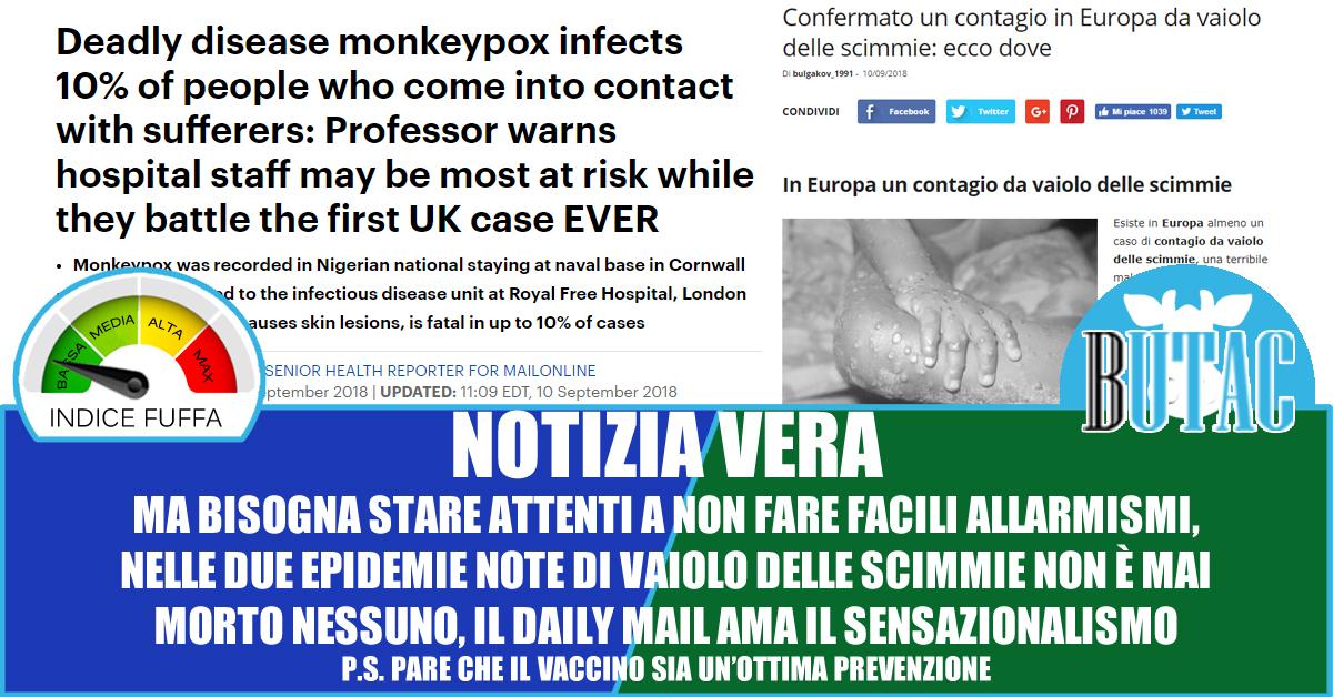 Confermato un contagio in Europa da vaiolo delle scimmie: ecco dove