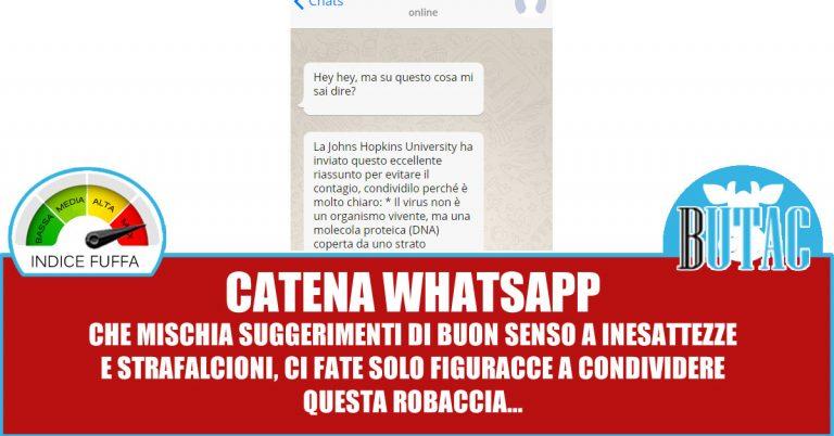 La catena WhatsApp della Johns Hopkins University
